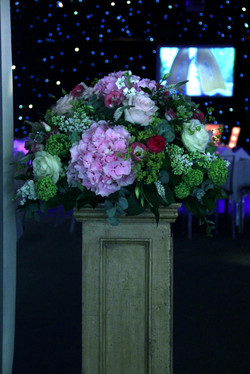 Party entrance display