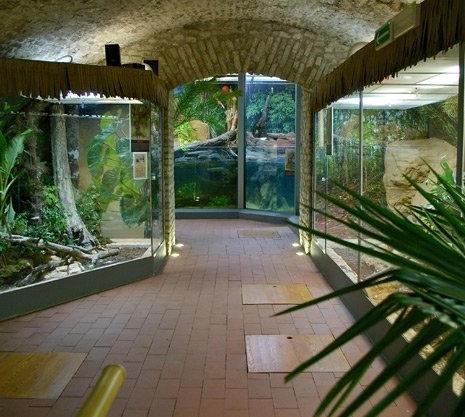 Füles Bástya Tiergarten