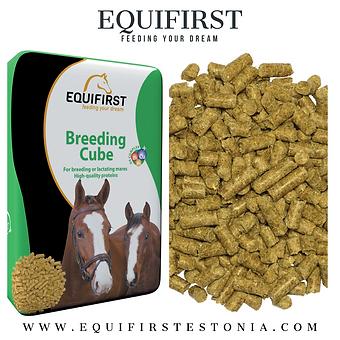 Breeding Cube.png
