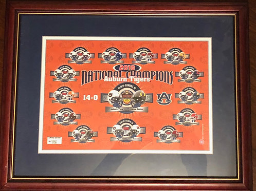 2010 National Champion Framed Season Picture