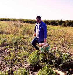 azienda agricola 5