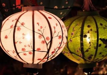 Floral Paper Lanterns
