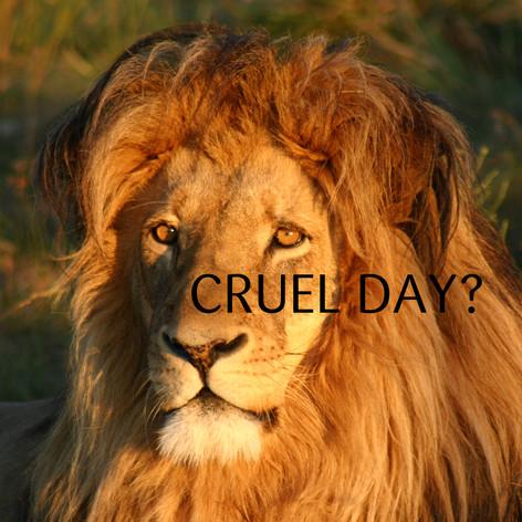 CRUEL DAY