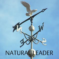 NATURAL LEADER