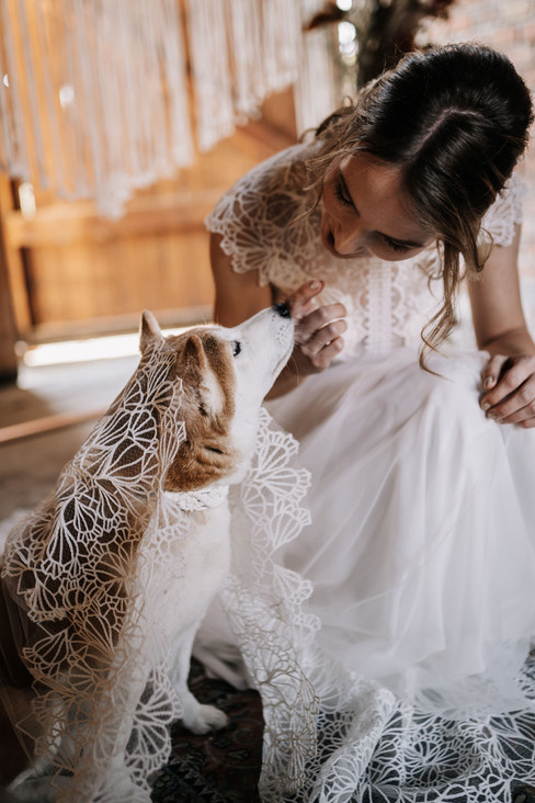 Boho Hochzeitsshooting mit Hund