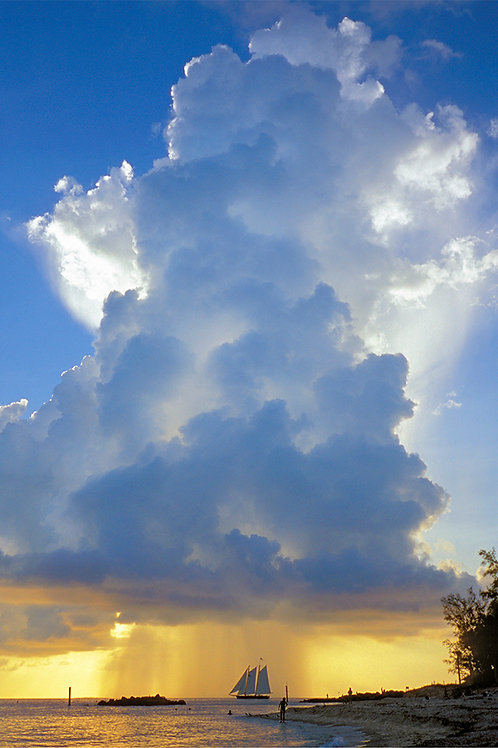 "Rain Cloud 11"" x 14"" Matte Paper Print"