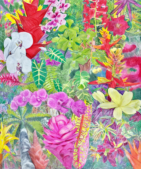 Tropical Garden Drawing 4.jpg