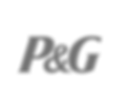 p_and_g_logo_edited.png