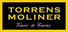 torrens moliner.png