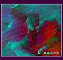 t_naive_1.jpg