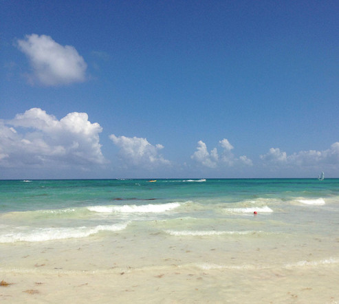 COMP beach.jpg