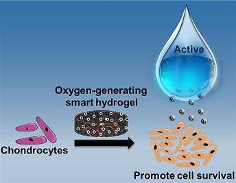 TOC-Oxygen-Generating%20Smart%20Hydrogel