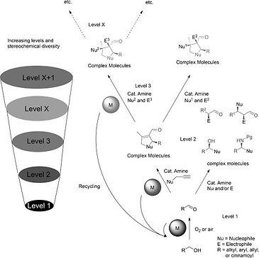 Combined Heterogeneous Metal-Chiral Amin