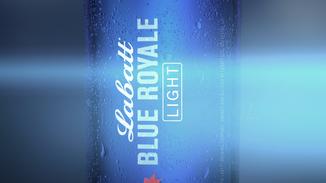 BLUE 2 MINI REEL.mp4