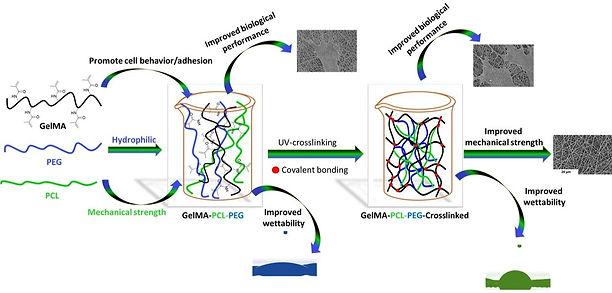Electrospun nanofiber composites with im