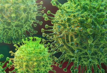 Time to Fear the Corona Virus?