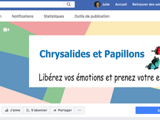 Lancement du Facebook Chrysalides et Papillons !