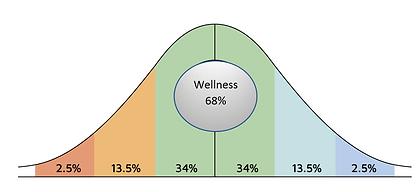 wellness68fix.PNG