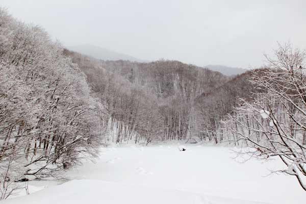 雪の曲沢沼