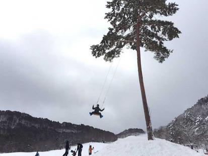 裏磐梯スキー場の大きなブランコ