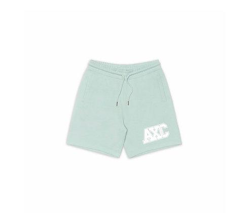 NEW ERA Standard Shorts