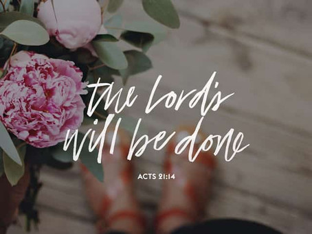 Acts 21 Reading Guide