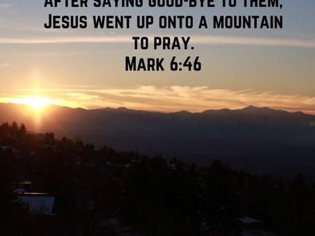 January 6 - Mark 6