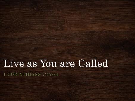 1 Corinthians 7 Reading Guide