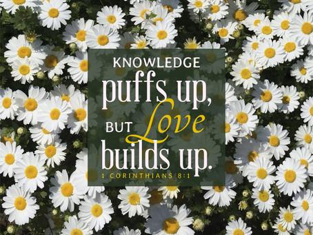 1 Corinthians 8 Reading Guide