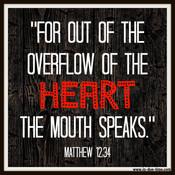 Matthew 12 Reading Guide