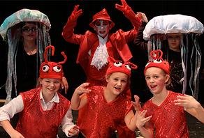 Sea Creatures - The Little Mermaid Jr costume set rental