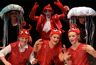 Sea Creatures - The Little Mermaid Jr costume set rental
