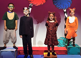 Jungle animals, Seussical KIDS, Seussical Jr, costume set rental