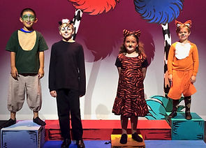 Jungle animals, Seussical KIDS, Seussical Jr, costume set rental