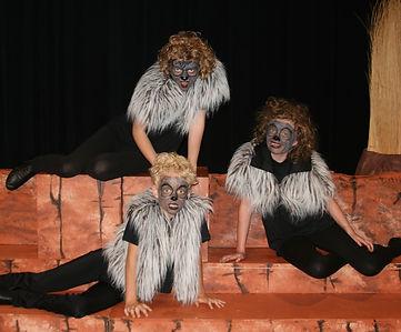 Th Lion King KIDS hyenas costume set rental