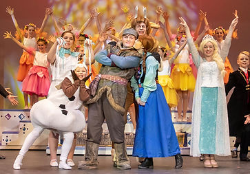 Frozen Jr costume set rental
