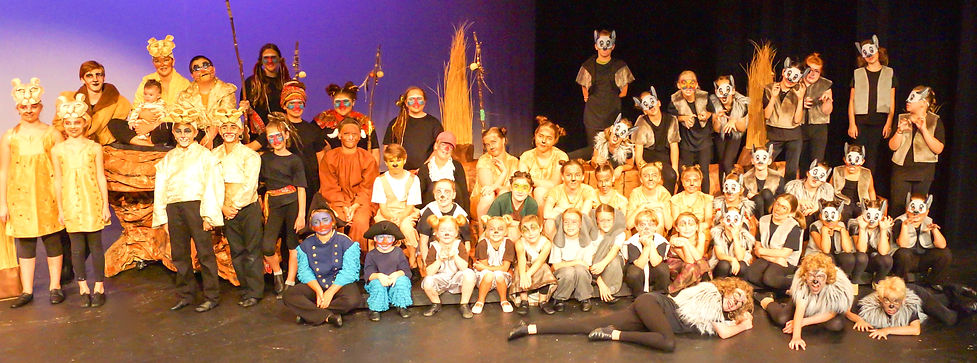 The Lion King KIDS cast costume set rental