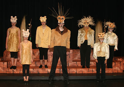 Lion King KIDS costume set rental