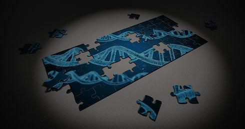 puzzle-2500333_edited.jpg