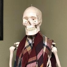 skeleton 1_edited.jpg