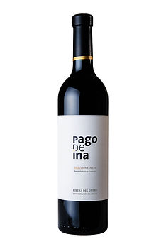 PAGO-DE-INA.jpg