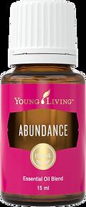 Abundance ätherische Ölmischung Young Living