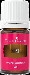 Rose das wertvollste ätherische Öl Aschach an der Donau von Young Living