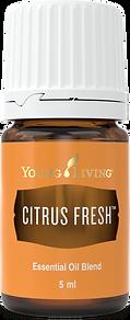 Citrus Fresh ätherisches Öl Aschach an der Donau Young Living
