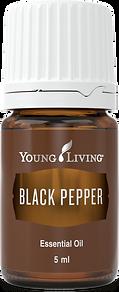 schwarzer Pfeffer ätherisches Öl Aschach an der Donau Young Living