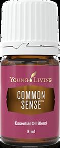 Common Sense ätherisches Öl um Entscheidungsfähigkeit zu unterstützen Young Living
