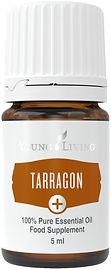 Estragon ätherisches Öl zum Kochen Eferding Young Living