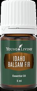 Idaho Balsam Fir ätherisches Öl Young Living