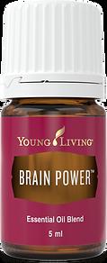 Brain Power ätherisches Öl fördert Konzentration und Klarheit beim lernen Young Living