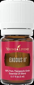 Exodus II ätherisches Öl Aschach an der Donau Young Living